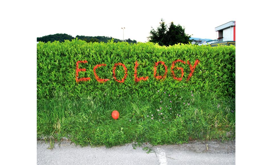 ecology01.jpg